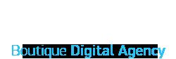 Netwising-logo